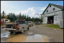 Trucks with moose lining up at checking station, Kokadjo. Maine, USA (color)