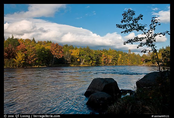 Penobscot River, boulders, and trees in fall. Maine, USA (color)