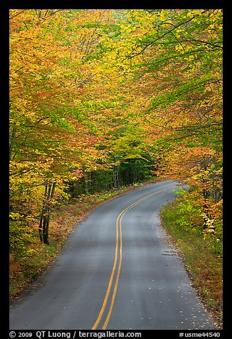 Road near entrance of Baxter State Park, autumn. Baxter State Park, Maine, USA (color)