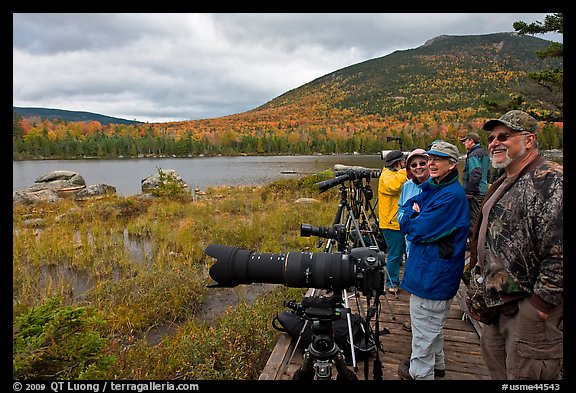 Wildlife photographers on observation platform, Sandy Stream Pond. Baxter State Park, Maine, USA