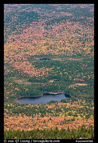 Elevated view of Whidden ponds surrounded by forest in fall foliage. Baxter State Park, Maine, USA (color)