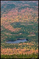 Elevated view of Whidden ponds surrounded by forest in fall foliage. Baxter State Park, Maine, USA