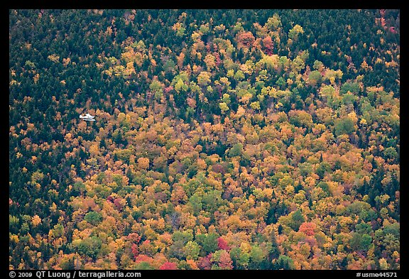 Floatplane flying against slope with trees in fall foliage. Baxter State Park, Maine, USA (color)