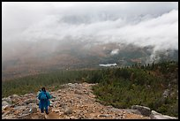 Hiker descending South Turner Mountain under the rain. Baxter State Park, Maine, USA ( color)