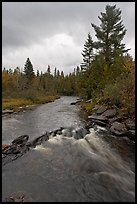 Allagash stream in stormy weather. Allagash Wilderness Waterway, Maine, USA