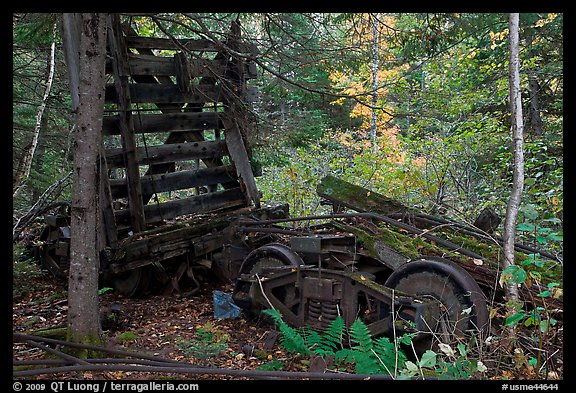 Remnants of railroad cars in the forest. Allagash Wilderness Waterway, Maine, USA (color)