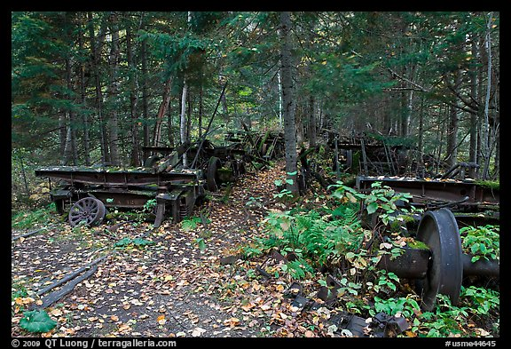Remnants of abandonned railway equipement. Allagash Wilderness Waterway, Maine, USA (color)