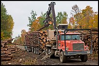 Logging truck loaded by log loader truck. Maine, USA (color)