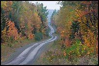North Woods in autumn with twisting unimproved road. Maine, USA