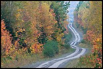 Dirt road and curves in the fall. Maine, USA