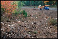 Deforested area and forestry truck and trailer. Maine, USA