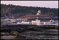 Fishing boats and forest. Stonington, Maine, USA