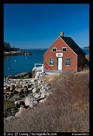 Lobstering shack. Stonington, Maine, USA (color)