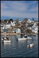 Lobster boats and houses on hillside. Stonington, Maine, USA ( color)