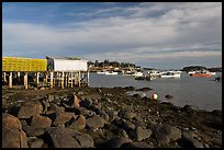Harber at low tide, late afternoon. Corea, Maine, USA (color)
