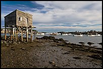 Tidal flats and harbor. Corea, Maine, USA ( color)
