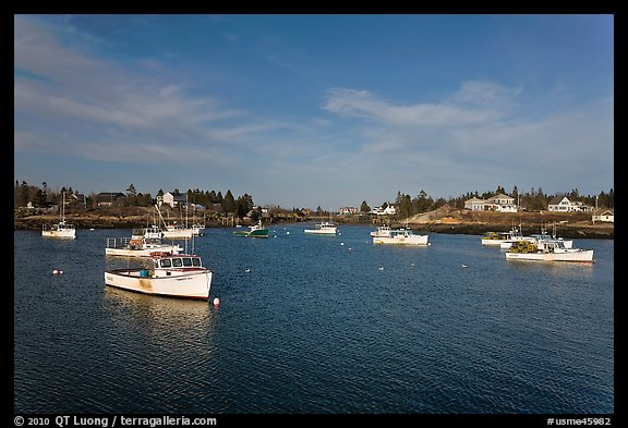 Traditional lobster fishing fleet. Corea, Maine, USA (color)