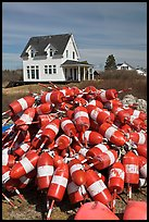 Colorful lobstering buoys. Corea, Maine, USA (color)