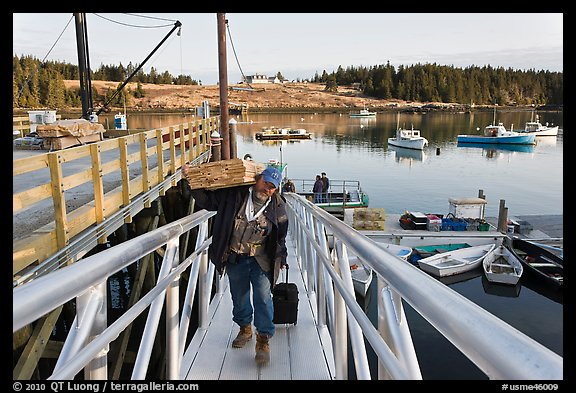 Man carrying construction wood and rolling case out of mailboat. Isle Au Haut, Maine, USA (color)