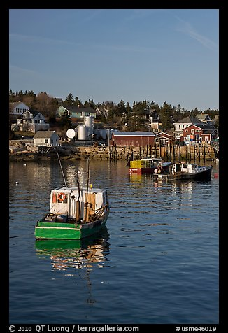 Traditional lobster boats and houses, late afternoon. Stonington, Maine, USA (color)