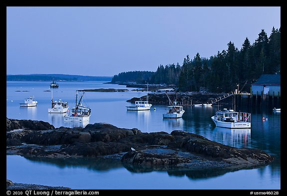 Lobstering fleet at dusk. Stonington, Maine, USA (color)