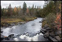 Stream in autumn forest. Allagash Wilderness Waterway, Maine, USA (color)