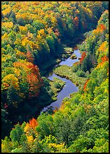 River and trees in autumn colors, Porcupine Mountains State Park. USA ( color)