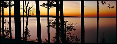Sunset lakescape through trees, Lake Superior. Upper Michigan Peninsula, USA (Panoramic color)