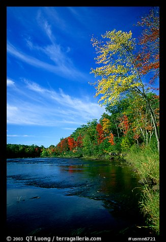 Trees and river, Banning State Park. Minnesota, USA