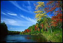Trees and river, Banning State Park. Minnesota, USA (color)