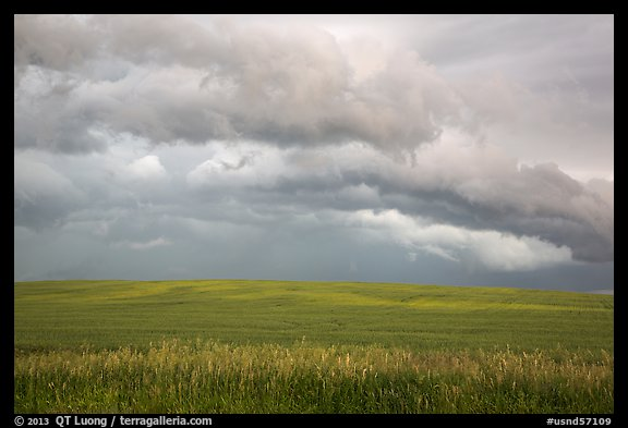 Storm clouds over field. North Dakota, USA (color)
