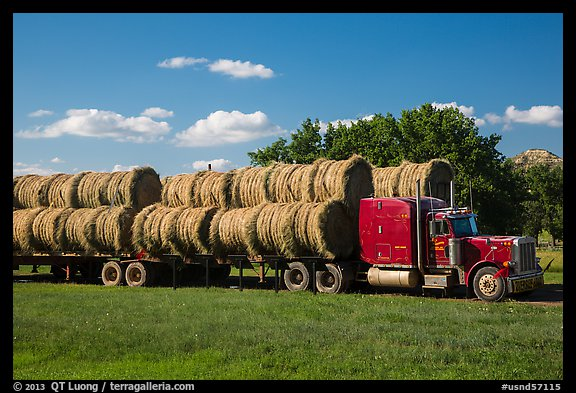 Truck loaded with hay rolls, Medora. North Dakota, USA (color)