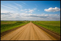 Gravel road in open prairie. North Dakota, USA ( color)