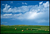 Field of grasses with hay rolls and big sky. North Dakota, USA