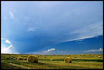 Storm cloud and hay rolls. North Dakota, USA