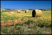 Hay rolls.. Nebraska, USA (color)