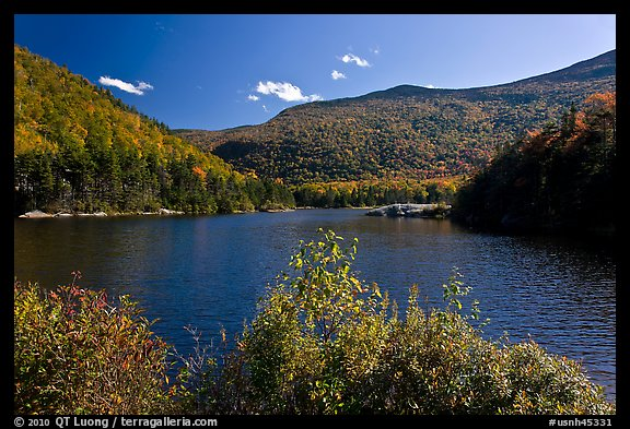 Beaver Pond and Kinsman Notch, White Mountain National Forest. New Hampshire, USA (color)