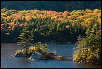Islet on Beaver Pond in autumn, White Mountain National Forest. New Hampshire, USA ( color)