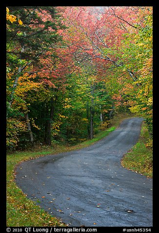 Rural road in the fall, White Mountain National Forest. New Hampshire, USA (color)
