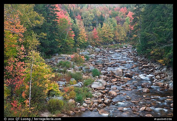 River in autumn, White Mountain National Forest. New Hampshire, USA (color)