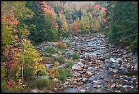 River in autumn, White Mountain National Forest. New Hampshire, USA ( color)