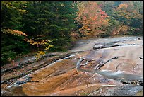 Stream over rock slab in autumn, Franconia Notch State Park. New Hampshire, USA