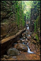 Flume Gorge, Franconia Notch State Park. New Hampshire, USA (color)