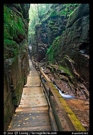 Boardwalk in the Flume, Franconia Notch State Park. New Hampshire, USA (color)
