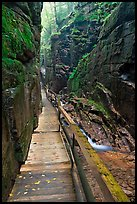 Boardwalk in the Flume, Franconia Notch State Park. New Hampshire, USA ( color)
