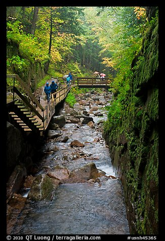 Flume gorge and hikers walking on boardwalk, Franconia Notch State Park. New Hampshire, USA (color)