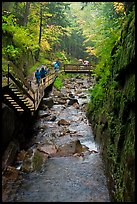 Flume gorge and visitors walking on boardwalk, Franconia Notch State Park. New Hampshire, USA