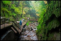 Rainy day at the Flume, Franconia Notch State Park. New Hampshire, USA