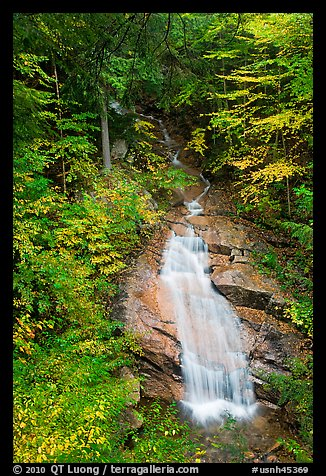 Avalanche Falls, Franconia Notch State Park. New Hampshire, USA (color)