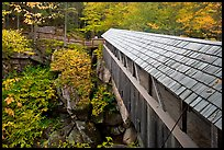 Sentinel Pine covered bridge, Franconia Notch State Park. New Hampshire, USA ( color)